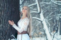 冬天秀丽妇女 有雪发型和构成的美丽的时装模特儿女孩在冬天森林欢乐构成和修指甲 免版税库存照片