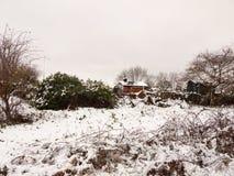 冬天积雪的外部国家领域场面棚子报道了12月 图库摄影