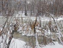 冬天积雪覆盖仅仅 库存图片