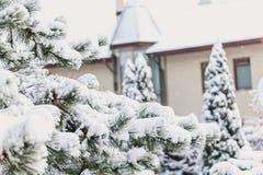 冬天童话故事 在城堡背景的积雪的杉木  免版税库存图片
