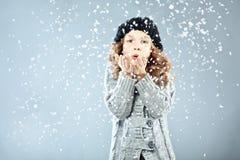 冬天纵向 免版税库存照片