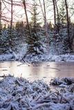 冬天结冰的河,仍然浇灌 26个综合数字式巨大的mpix全景射击范围多雪的结构树 免版税库存图片