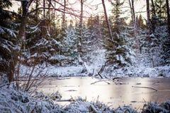 冬天结冰的河,仍然浇灌 26个综合数字式巨大的mpix全景射击范围多雪的结构树 库存照片