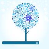 冬天结构树 库存照片