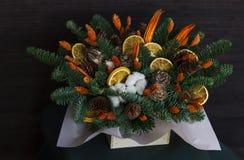 冬天结构的冷杉分支,干桔子,棉花和 免版税库存照片