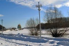 冬天美丽的Borcea 免版税库存照片