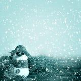 冬天背景图表冬天雪人雪霜projectsspa 免版税库存照片