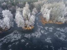 冬天背景的鸟瞰图与一个积雪的森林的 图库摄影