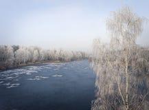冬天背景的鸟瞰图与一个积雪的森林的 库存图片