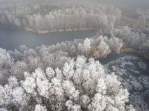 冬天背景的鸟瞰图与一个积雪的森林的 免版税库存照片