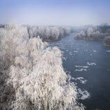 冬天背景的鸟瞰图与一个积雪的森林的 免版税图库摄影