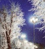 冬天背景-冬天与光亮的灯笼的夜视图在冬天冷淡的树和落的冬天雪中 免版税库存照片