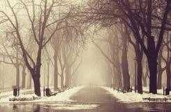 冬天胡同在傲德萨,乌克兰。 免版税库存照片