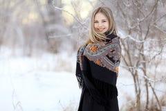 冬天自然的美丽的妇女 库存照片