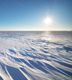 冬天自然风景 免版税库存照片