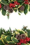 冬天花卉边界 库存图片