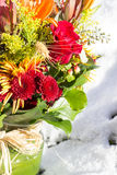 冬天花束 免版税图库摄影