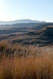 冬天草和干燥风景在奥兰治自由邦 免版税库存照片