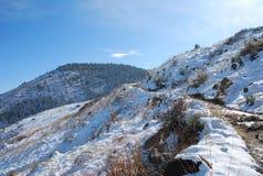 冬天落矶山脉足迹在白天 免版税库存照片