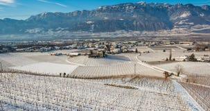 冬天葡萄园风景,报道用雪 特伦托自治省女低音阿迪杰,意大利 主要经济因素是沿南T的葡萄栽培 免版税图库摄影
