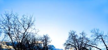 冬天蓝天背景 库存图片