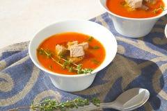 冬天蕃茄与金枪鱼的奶油汤 免版税库存图片