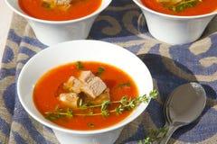 冬天蕃茄奶油汤 库存照片