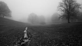 冬天薄雾在公园2 库存照片