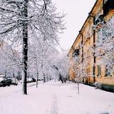 冬天街道 库存照片