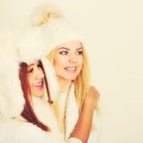冬天衣物的两个女孩温暖盖帽 库存图片