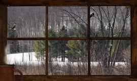 冬天视图。 库存照片
