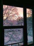 冬天视图 库存照片