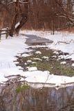 冬天解冻垂直的弗吉尼亚风景 库存图片