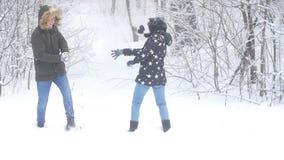 冬天走和旅游业概念 年轻愉快的夫妇步行和获得乐趣在森林里在冬天 股票录像