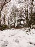 冬天走道道路穿过森林积雪的地板树 库存图片