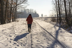冬天走 免版税库存图片