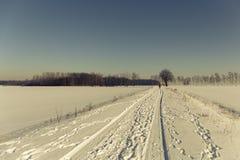 冬天走 图库摄影