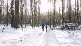 冬天跑在早晨森林的森林年轻人和妇女 滑雪在背景的人们 股票视频