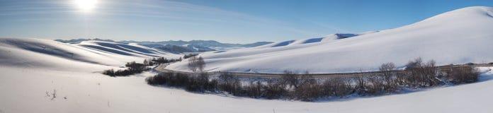 冬天路和树全景在雪下在阿尔泰 免版税图库摄影