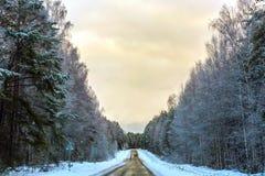 冬天路在俄罗斯 库存照片