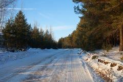 冬天路在杉树森林里在一个明亮的晴天 免版税库存图片
