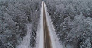 冬天路在森林里 股票视频
