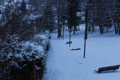 冬天路在雪森林里 免版税图库摄影