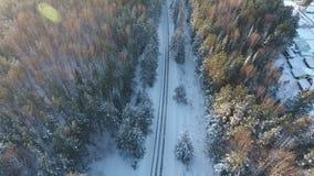 冬天路空中照片在森林 股票视频