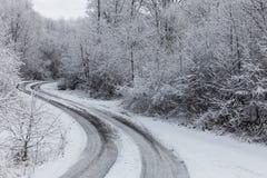 冬天路通过在雪盖的冰冷的森林在冰暴和降雪以后 免版税库存照片