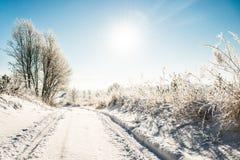 冬天路通过多雪的领域 库存照片