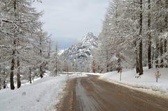冬天路通过多雪 免版税库存照片