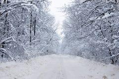 冬天路 免版税库存照片