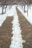 冬天边路 免版税库存图片