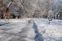冬天边路 库存照片
